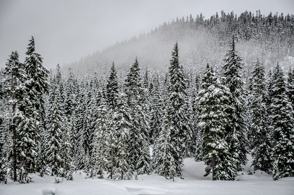 Snowshoe navigation: Pick a spot on the map, go there the easiest way you can